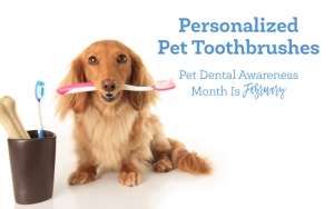 Personalized Pet Toothbrushes